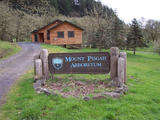 Mount Pisgah Trail
